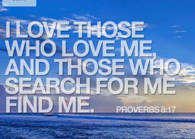 proverbs817